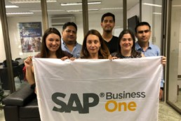 Academia VK SAP Business One